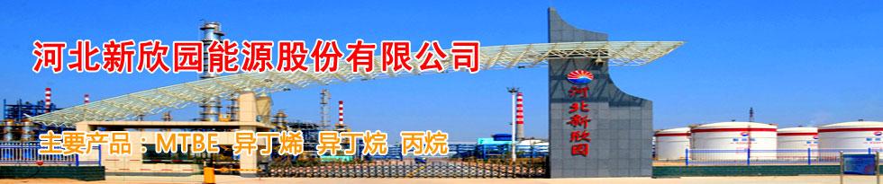 河北新xin园能源股份有限gong司